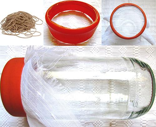 Brotes de semillas: utensilios